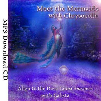 MeetTheMermaidsSoulImmersion